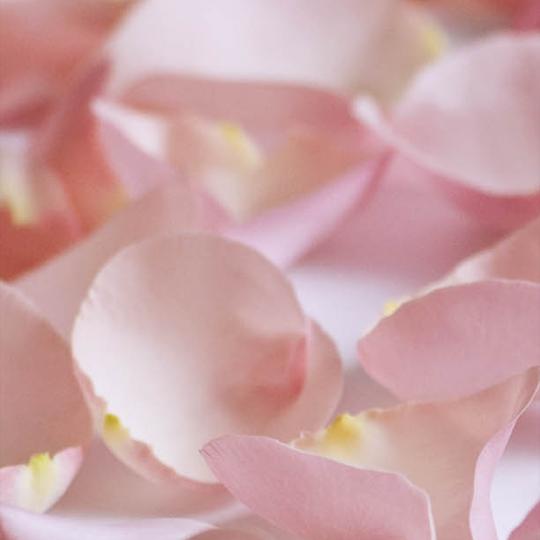 product-image-rose-petals-small-bag